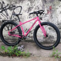 Custom Bikes - Pink Surly Troll